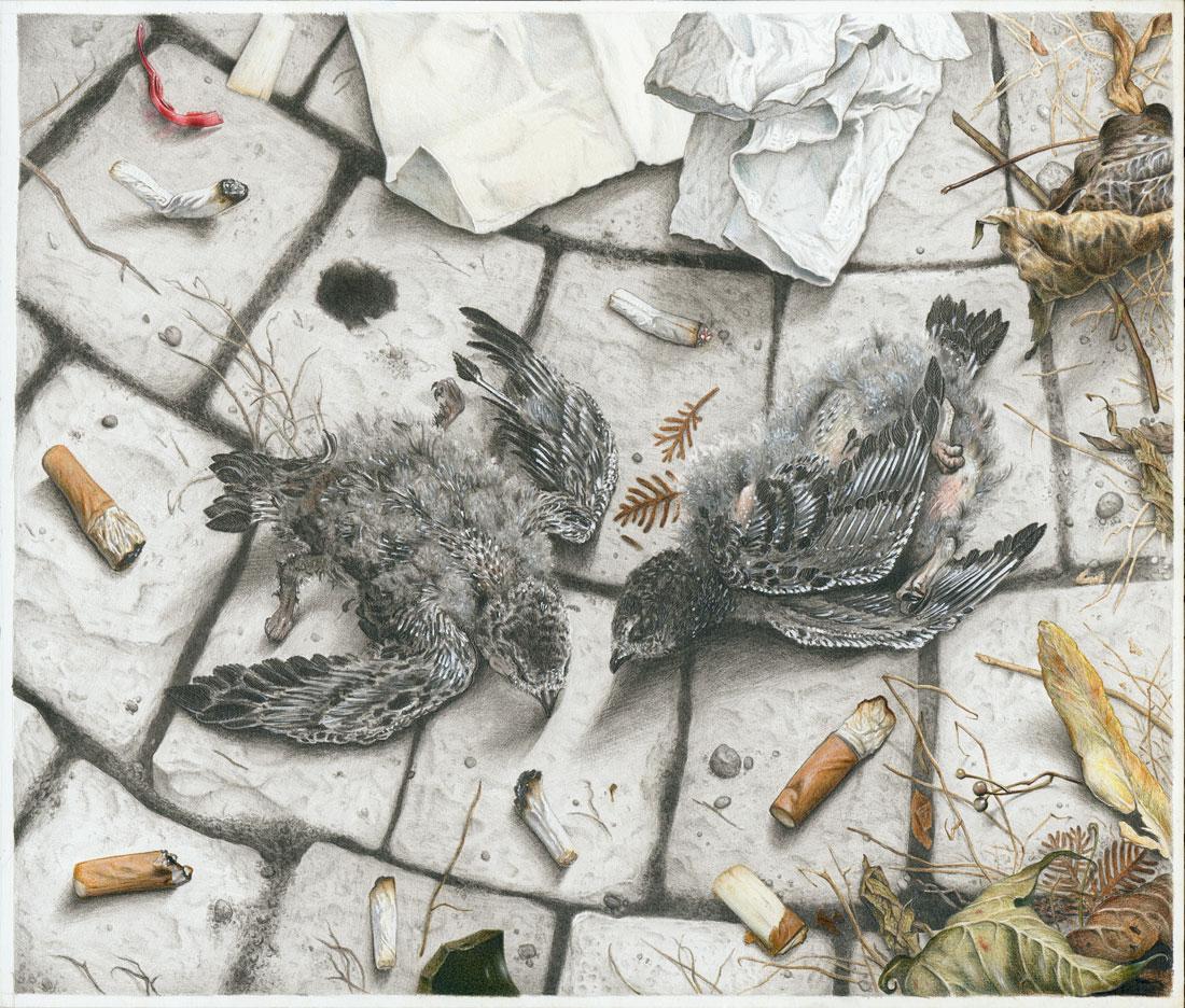 """""""Zwei tote Taubenküken"""", Bleistift-Buntstift-auf-Papier, 30 cm x 25 cm, 2016"""