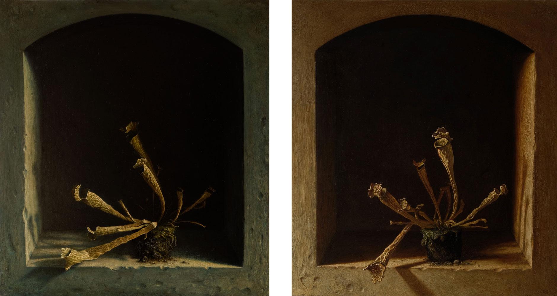 Öl auf Leinwand, 50 cm x 46cm, 2017